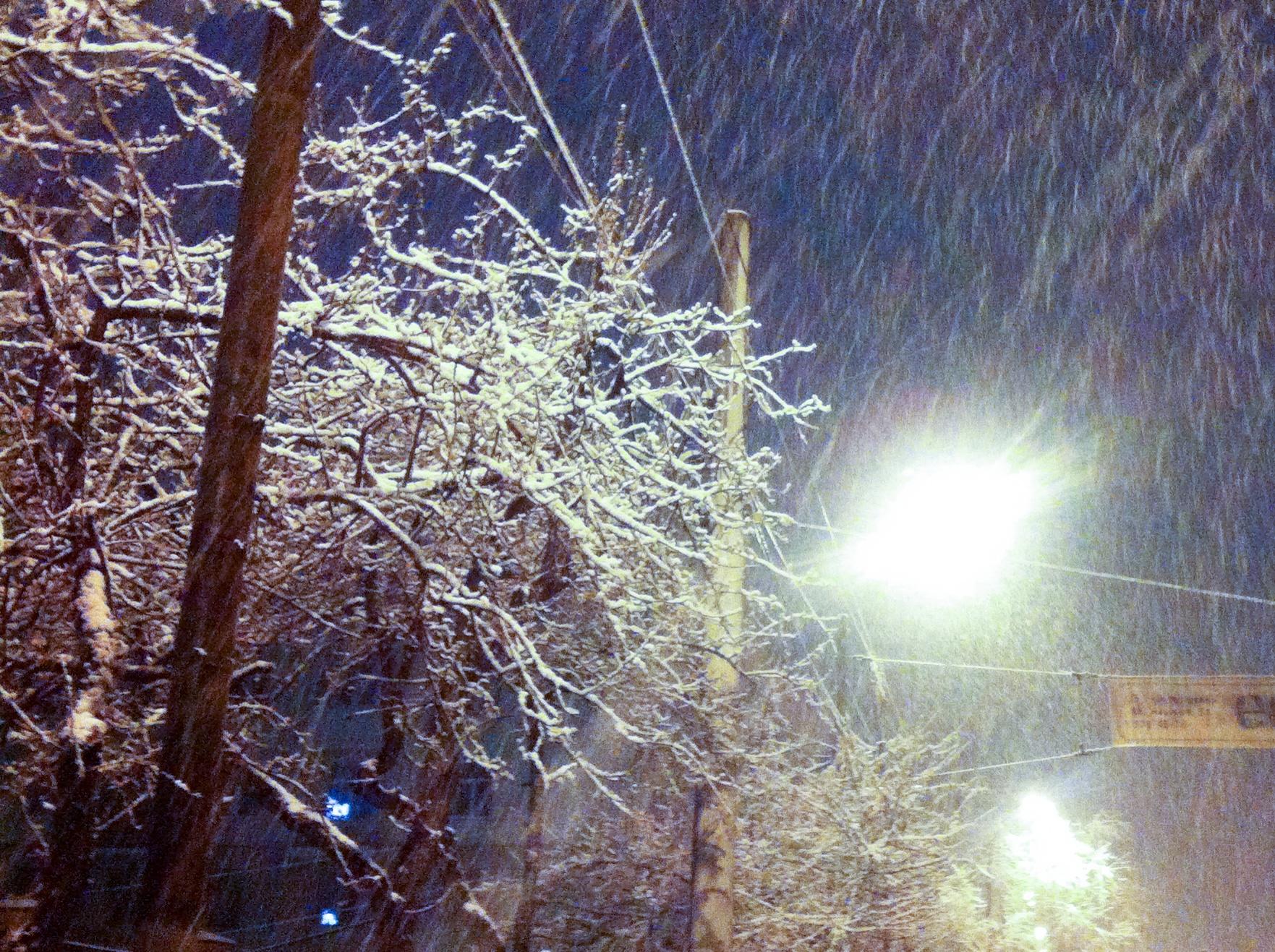 Традиционный майский снег в Екатеринбурге, фото Уралнаш